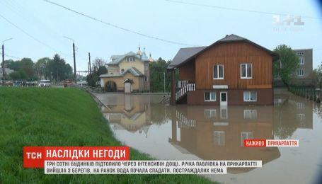 На Прикарпатье река вышла из берегов: подтоплены домохозяйства