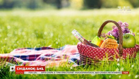 История проведения пикников