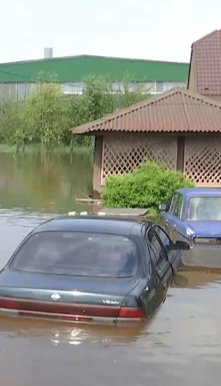Домашние животные погибли вследствие потопа в Ровенской области
