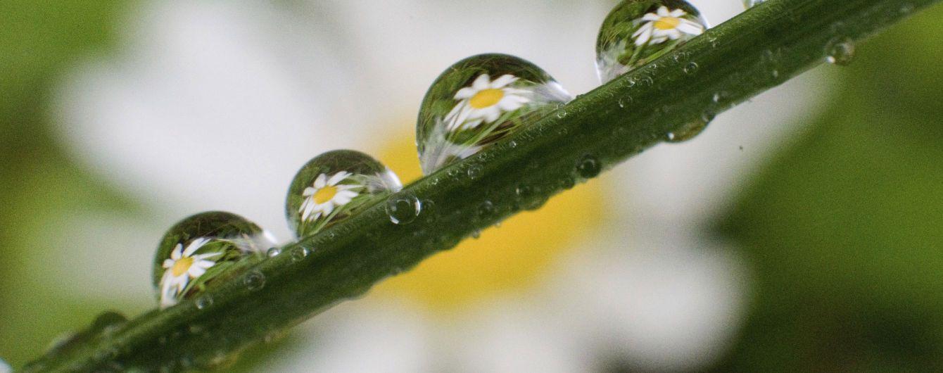Погода на воскресенье: в Украине ожидают теплую, но дождливую погоду