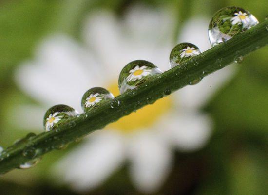 Погода на суботу: в Україні будуть дощі, грози та град
