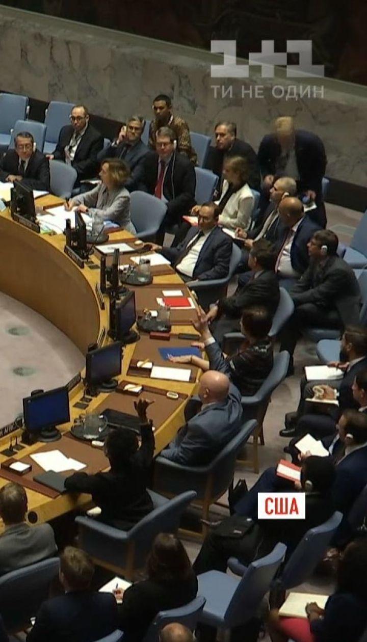 У залі Радбезу ООН палко подискутували щодо закону про українську мову