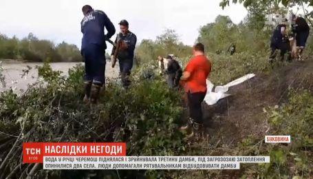 Села под угрозой затопления: вода в реке Черемош разрушила треть дамбы