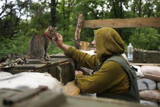 Украинские защитники на Донбассе имеют право стрелять в ответ - командование ООС