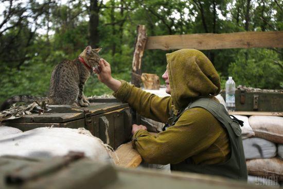 Українські захисники на Донбасі мають право стріляти у відповідь - командування ООС