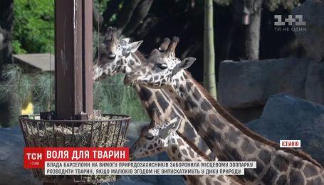 У Барселоні заборонили розводити тварин, якщо їхніх малюків згодом не випускатимуть до дикої природи