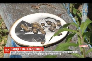 На Вінничині школяр поглумився з могил: пошкодив 60 надгробків