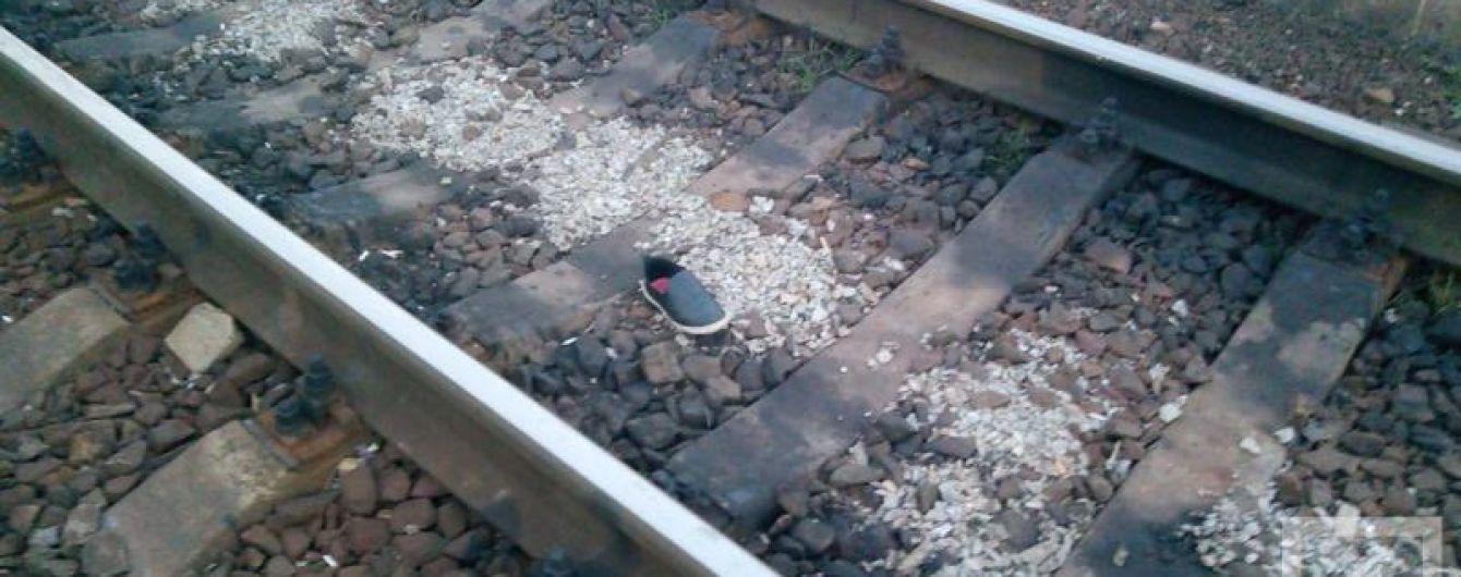 У Кривому Розі жінці відрізало ноги потягом