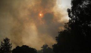 В Ізраїлі через аномальну спеку вирують масштабні пожежі: вогонь дістався Іорданії