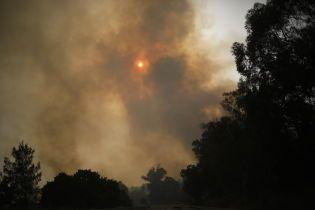 В Израиле из-за аномальной жары бушуют масштабные пожары: огонь добрался до Иордании