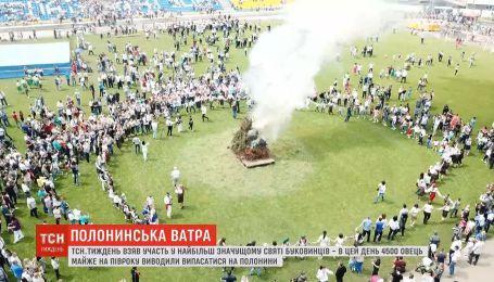 """""""Полонинська ватра"""": у горах на Буковині влаштували свято виходу на полонини"""