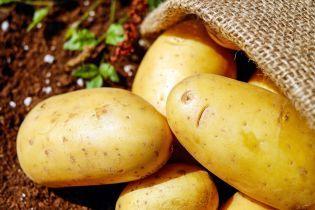 Эксперты рассказали, почему в Украине рекордные цены на картофель