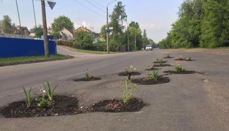 Вибоїни на вулицях Луцька жителі засадили квітами