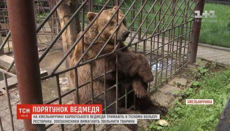 На Хмельниччині ведмедя тримають у тісному вольєрі ресторану