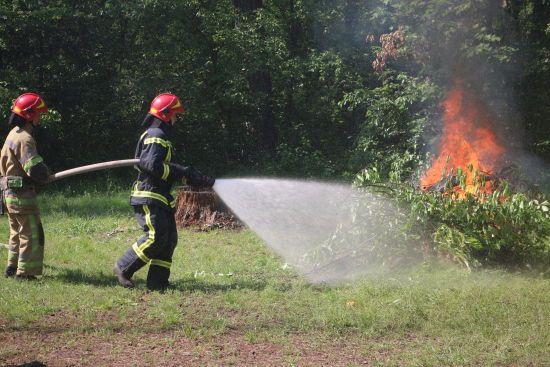 Самі підпалили - самі загасили: у Києві рятувальники показали, наскільки готові гасити лісові пожежі