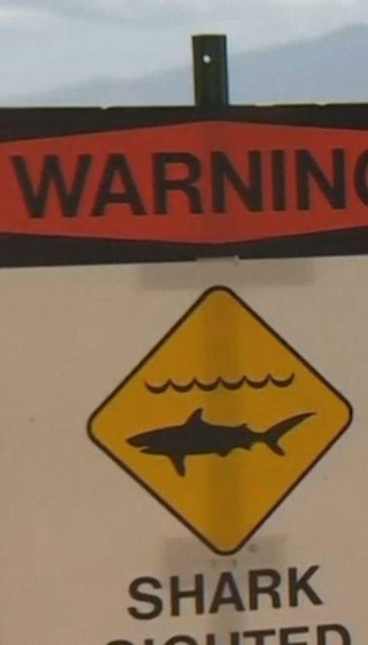 Фатальне купання: на Гаваях акула вбила відпочивальника