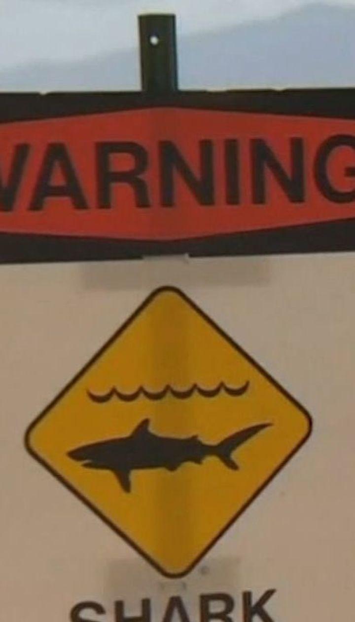 Роковое купание: на Гавайях акула убила отдыхающего
