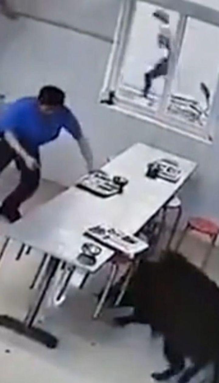 Безумный кабан напал на столовую в Китае