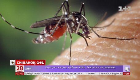 Як відрізнити безпечні укуси комах від небезпечних