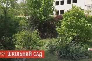 Учительница из Харькова обустроила в школе уникальный ботсад с 2000 растений со всего мира