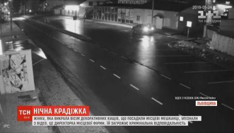 Жінку, яка викрала декоративні кущі на Львівщині, упізнали з відео