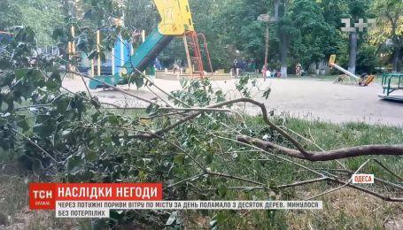 В Одесі через потужні пориви вітру за день поламало з десяток дерев