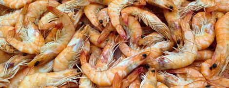 У Бердянську сталося масове отруєння креветками