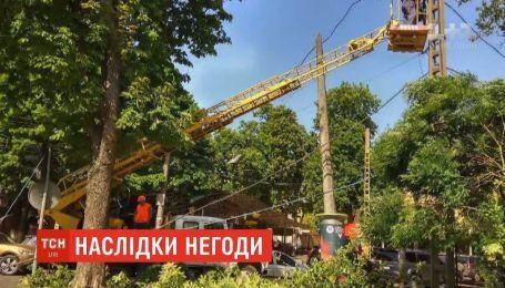 Мощный ветер за день поломал с десяток деревьев в Одессе