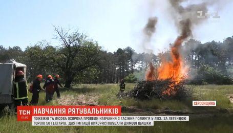 Пожарные и лесная охрана провели учения по тушению пожара в Херсонской области