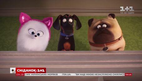 """О серьезном с юмором: почему стоит пойти на """"Секреты домашних животных 2"""""""