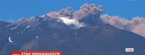 """В Італії вулкан """"ожив"""" і заблокував роботу двох аеропортів"""