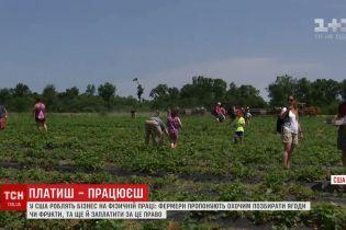 В США приобретает популярность агротеймент: фермеры за деньги позволяют покупателям собирать урожай