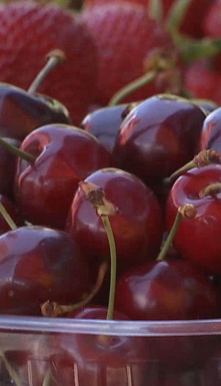 Когда выровняются цены на черешню и как выбрать самую вкусную ягоду