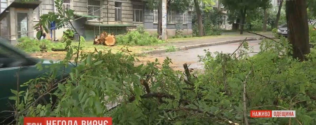 Поваленные деревья перекрыли Одессу после ночной непогоды