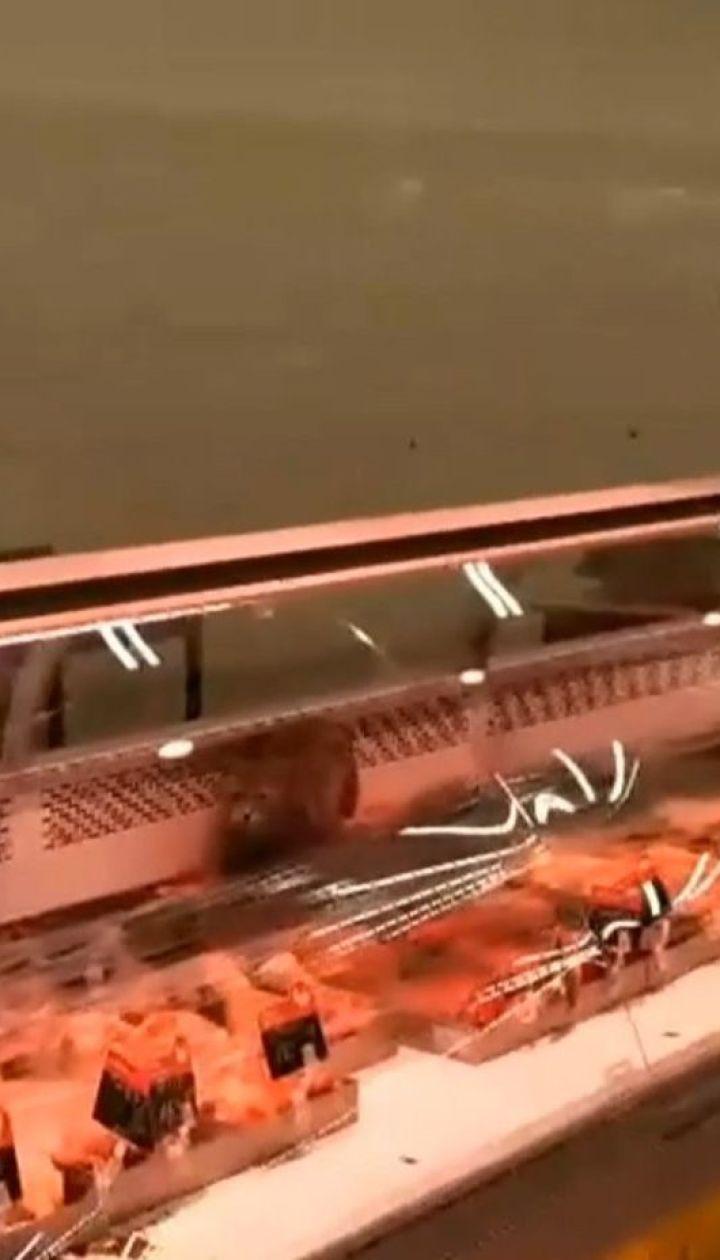 Кот дегустировал мясо прямо в витрине одного из столичных супермаркетов