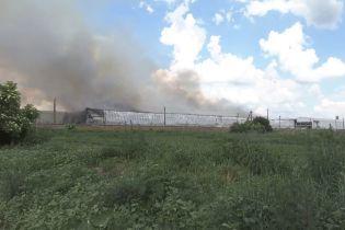 200 тисяч курей згоріли живцем під час пожежі на васильківській птахофермі
