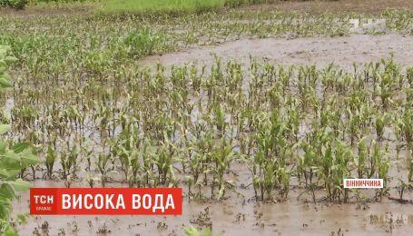 Через раптову повінь на Вінниччині загинула багатодітна матір