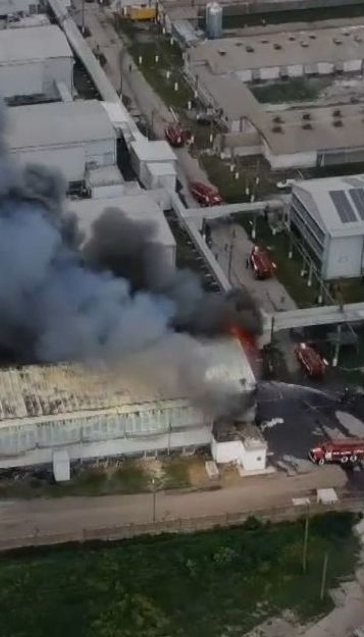 200 тысяч птиц сгорели заживо во время пожара на птицеферме в Василькове