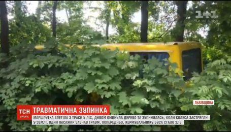На Львовщине маршрутка с пассажирами на скорости съехала с трассы
