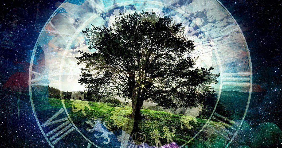 Что звезды нам пророчат: астропрогноз на 10-16 июня