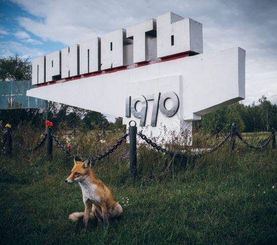 """Зона відчуження біля ЧАЕС переживає туристичний бум після серіалу """"Чорнобиль"""""""