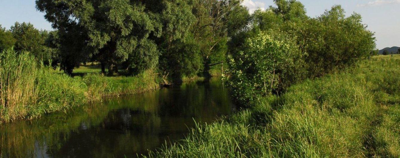 Забруднення річки Рось: екологи повідомили дані останніх досліджень проб води
