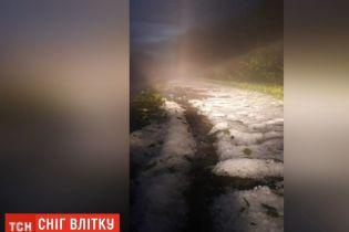 На Житомирщине неожиданно выпал снег