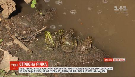 Селянам на Вінниччині заборонили купатись, рибалити та використовувати річкову воду