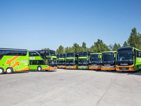 Автобусна компанія Flixbus запустить рейси з Одеси до Чехії