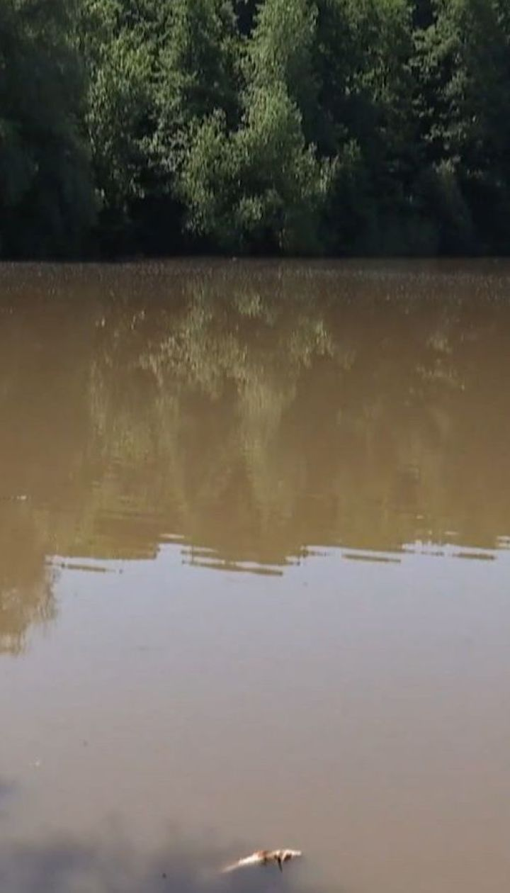 Суттєвого забруднення у річці Рось не виявили, та використовувати воду не радять