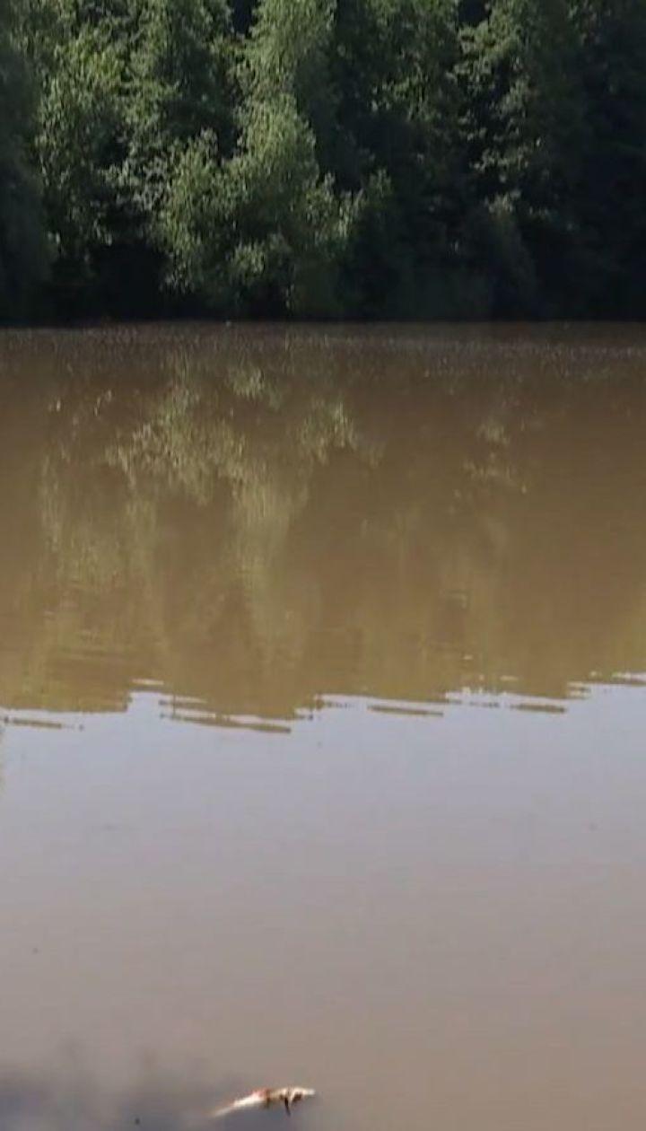 Существенного загрязнения в реке Рось не нашли, но использовать воду не советуют
