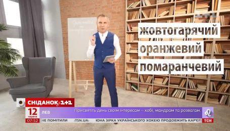 """Как говорить на украинском: """"оранжевий"""" или """"помаранчевий - Экспресс-урок"""
