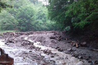 Правоохранители рассказали детали гибели лесорубов на Закарпатье