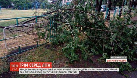 У центральній Україні буревій повалив дерева та рекламні щити